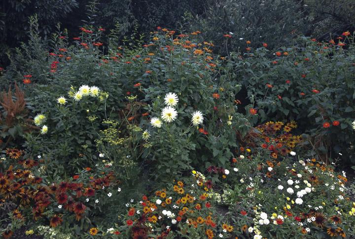 19-Festival-fleuri